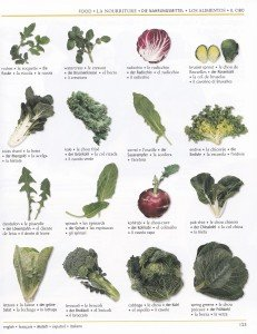 Les légumes 2