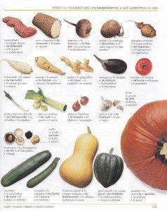 Les légumes 4