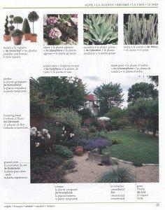 Les plantes de jardin 2